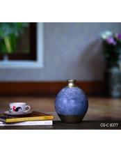 CG-C 8377