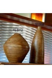 TE 5812 / TE 5808