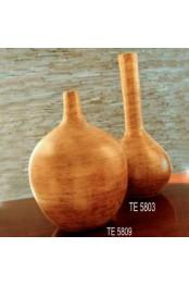TE 5803 TE 5809